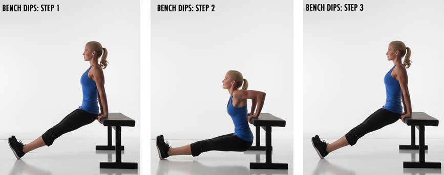 bench-dips